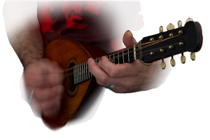 budestrings mandolin guitar tuition lessons Bude Cornwall